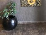 Buddha Bár